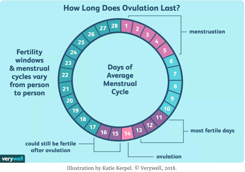 排卵時症狀
