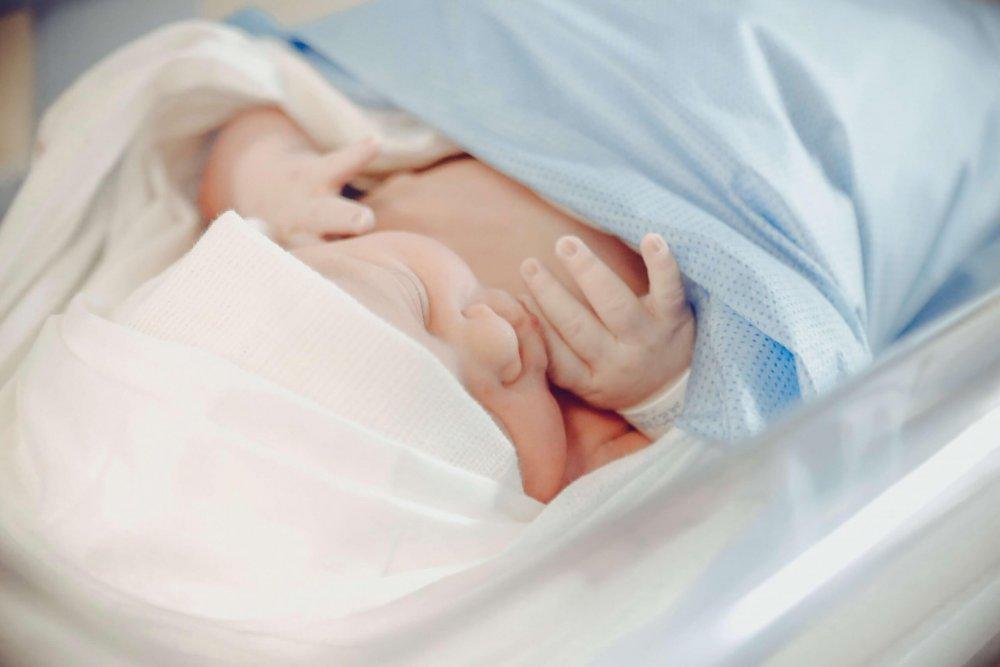 新生兒保險